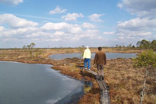 Dabas pārgājiens: Pa ezeriem, upēm un purviem no Tartu uz Pērnavu