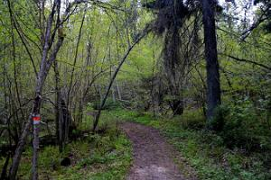 Wanderweg von Vällamäe