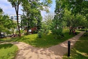 Tartu loodusmaja park täis rohelust