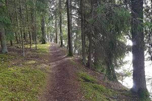Туристическая тропа Пюхаярве