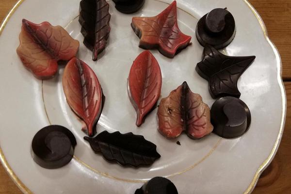 Tooršokolaadi õpituba