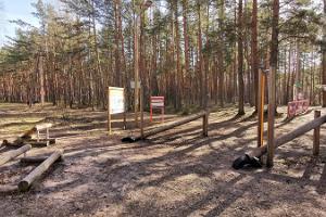 Freiluftkraftraum des Gesundheitspfads Reiu-Raeküla