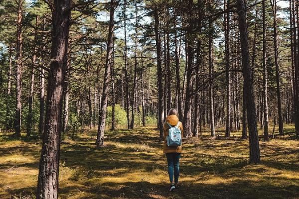 Päevareis algusega Tallinnast: Prangli saare matk ja kuum Eesti saun