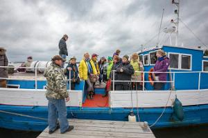Поездки для наблюдения за тюленями на островах Малузи