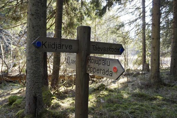 Roiupalu study trail