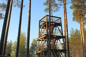 RMK Liipsaare observation tower