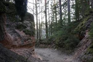 Wanderpfad Taevaskoja-Otteni-Taevaskoja der Staatlichen Forstverwaltung
