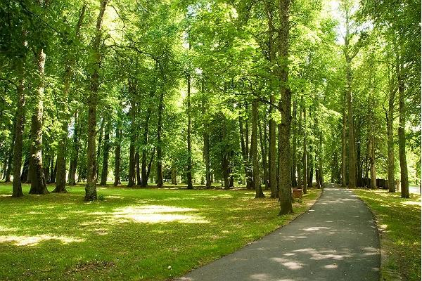 Ülenurme park
