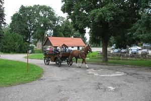Ilenurmes parks