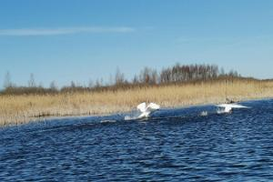 Flottäventyr på ån Emajõgi för skolelever