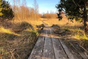 Wanderweg von Lagleranna