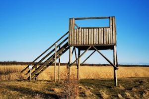 Birdwatching towers near the Pikla ponds