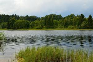 Vasknan järvi Haanjamaalla
