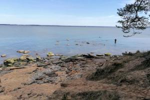 Leetsen kalkkikivitörmä, ranta ja leirintäalue