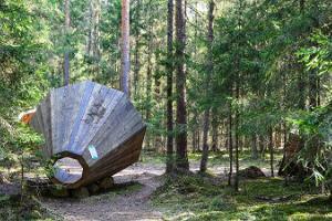 Forest megaphones in Võru County