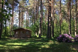 Voosemetsa Tourism Farm Bed & Breakfast