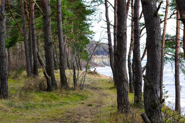 Tagesausflug zu den nordestnischen Stränden und zum Tagebau Rummu