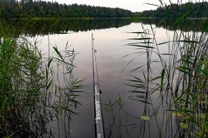 Рыбная ловля на лесных озерах Паункюла