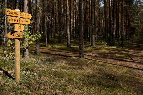 Fahrradstrecke Laskevälja