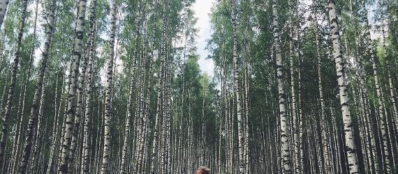 Upplev den estniska naturen virtuellt eller direkt på plats