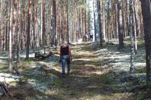 Учебная тропа Нохипало Центра управления государственными лесами