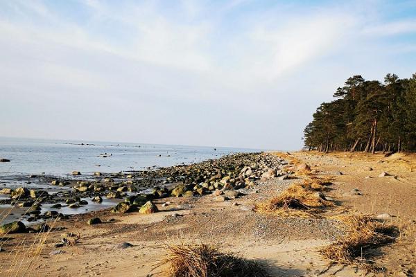 Lemmes pludmale un RMK telšu zona