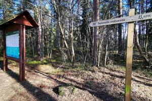 Tammisten metsäpolku