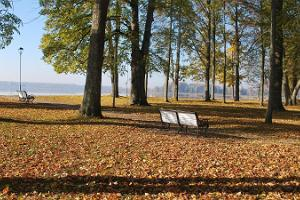 Das Denkmal für Fr. R. Kreutzwald und der Park am See Tamula