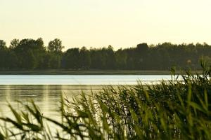 Lake Tamula