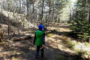 Palumägede hiking trail and campfire site