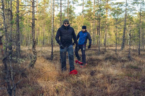 Moorschuhausflug im bekanntesten Hochmoor Estlands, dem Viru-Hochmoor