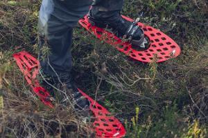 Pārgājiens ar sniega kurpēm Igaunijas slavenākajā purvā - Viru purvā