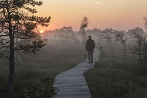 Nature, dunes, and legends of Luitemaa