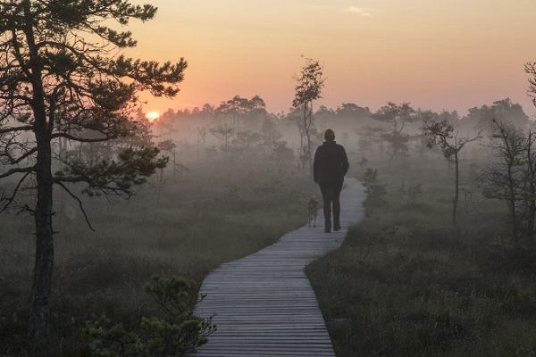 Nature, dunes, and legends of Luitemaa