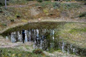 Ilumetsa meteorite craters