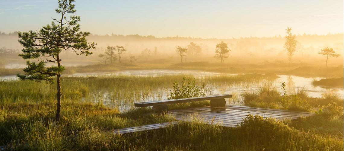 Soomaa national park, Visit Estonia