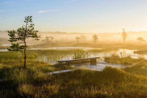 Soomaa national park, Visit Estonia