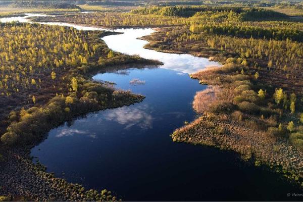 Nature Tours Estonia 1-päevased kanuuretked Emajõe-Suursoos