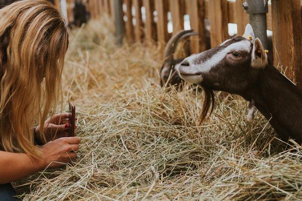 Excursion to Andri-Peedo Farm