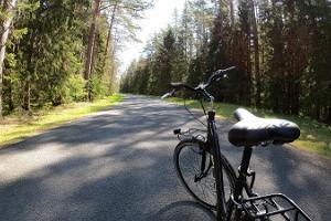 Päevane rattaseiklus Kolga mõisast Juminda poolsaare võludeni
