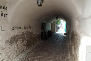 Guided Walking Tour in Tallinn