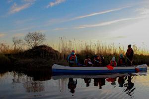 Late evening beaver sighting canoe trip in Matsalu National Park