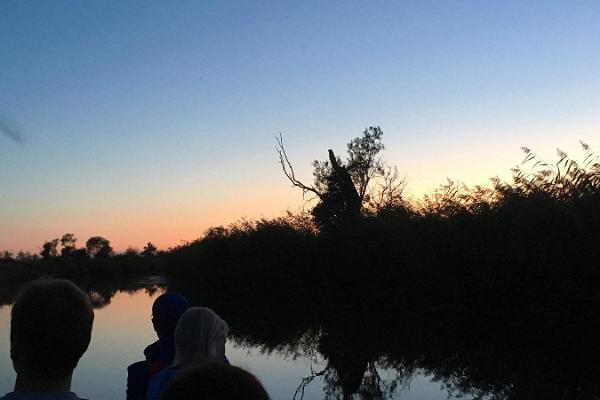 Hilisõhtune kopravaatlus suurkanuul Matsalu rahvuspargis