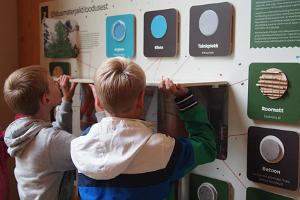 Ausstellungen des Tartuer Naturhauses