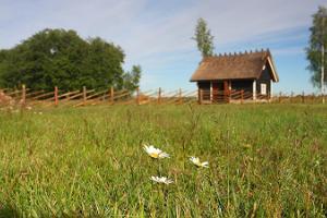 Посещение хутора Тянава
