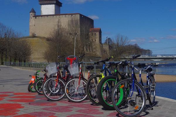 Bicycle rental in Joaoru recreation area