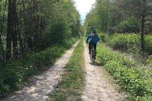 Auf eigene Faust mit dem Fahrrad auf die Halbinsel Sõrve