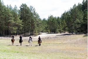 Ratsamatkad ja -laagrid, ratsutamine igale tasemel huvilisele Juurimaa Tallis