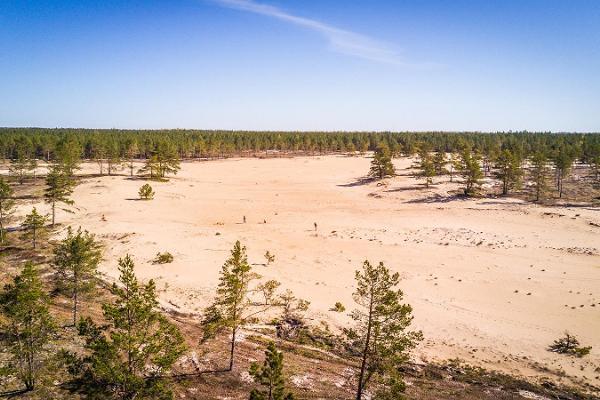 Kaibaldi area of loose sand