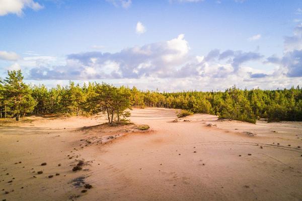 Kaibaldin hiekkakivi